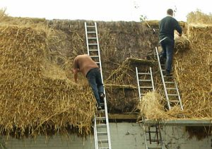 Thatching a roof is an age-old tradition. Not only is it environmentally friendly but also very much back in vogue