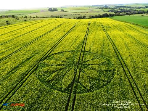 Crop Circle 2012