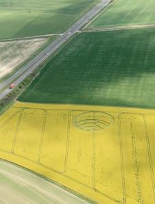 Wilshire Crop Circle 2012